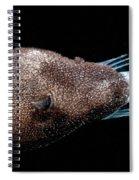 Triplewart Seadevil Spiral Notebook