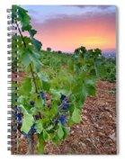 Vineyards Spiral Notebook