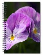 Viola Named Columbine Spiral Notebook