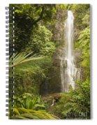 Wailua Falls Spiral Notebook