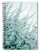 Winter Wonderland In Switzerland Spiral Notebook