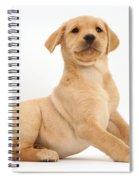 Yellow Labrador Retriever Puppy Spiral Notebook