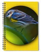 Yellow-rumped Warbler Spiral Notebook