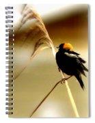3287 - Bobolink Spiral Notebook