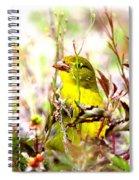3395 - Tanager Spiral Notebook