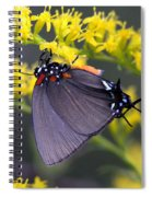 3398 - Butterfly Spiral Notebook