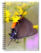 3433 - Butterfly Spiral Notebook