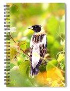 3457 - Bobolink Spiral Notebook