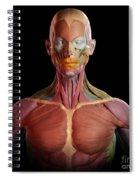 Facial Muscles Spiral Notebook