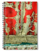 377 At 41 Series 3 Spiral Notebook