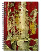 377 At 41 Series 5 Spiral Notebook