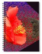 3d Butterfly Spiral Notebook
