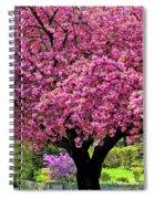 4-27-2009img_7246a Spiral Notebook
