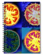 4 Abstract Tomatoes Spiral Notebook
