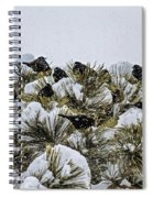 4 And 20 Blackbirds Spiral Notebook