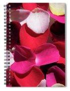 Back Lit Flower Petals 1 Spiral Notebook