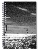 4 Boats On The Horizon Bw Spiral Notebook