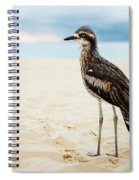 Bush Stone-curlew Resting On The Beach. Spiral Notebook