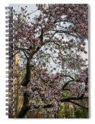 Central Park Spring Spiral Notebook