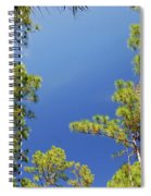 4- Cypress Trees Spiral Notebook
