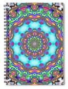 Fractal  Spiral Notebook