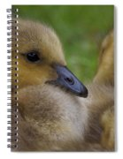 Goslings Spiral Notebook
