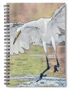 Great Egret Chase Spiral Notebook