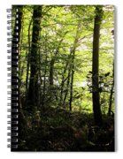 Hazelwood Co Sligo Ireland Spiral Notebook
