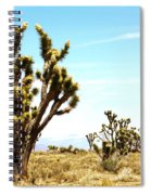 Joshua Tree Desert Spiral Notebook