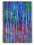 Magic Of The Aspens Spiral Notebook