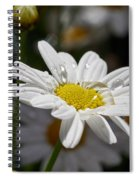 Marguerite Daisy Spiral Notebook