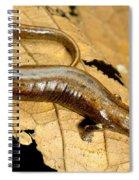 Nauta Palm Foot Salamander Spiral Notebook