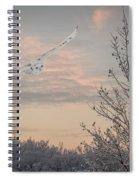 Snowy Owl Glide Spiral Notebook