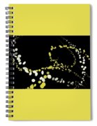 Other Spiral Notebook