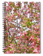 Pink Cherry Tree Spiral Notebook