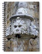 Public Fountain In Dubrovnik Croatia Spiral Notebook
