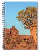 Quiver Tree Forest - Namibia Spiral Notebook