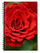 Rose Spiral Notebook