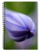 Royal Botanical Garden Of Madrid Spiral Notebook