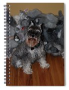Stuffed Animals Spiral Notebook