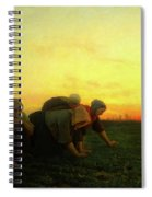 The Weeders Spiral Notebook