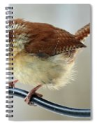 Virginia Wren Spiral Notebook