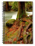 Whatcom Creek Spiral Notebook