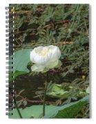 White Lotus Flower Flower Lotus Nature Summer Green Plant Blossom Asian Spiral Notebook
