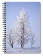 Winterscape Spiral Notebook