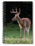 4 X 4 Buck Spiral Notebook