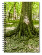 cypress forest and swamp of Congaree National Park in South Caro Spiral Notebook