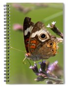 4467 - Butterfly Spiral Notebook