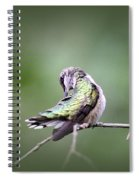 4864-002 - Ruby-throated Hummingbird Spiral Notebook