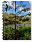 49- Florida Everglades Spiral Notebook